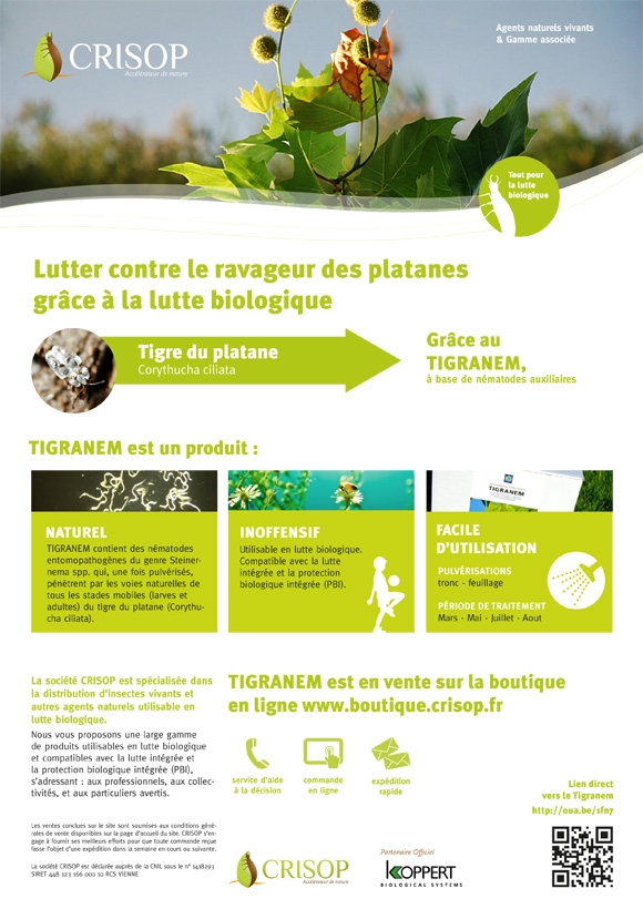 Support de communication, création de l'identité visuelle, refonte du logotype, Graphisme, Lyon